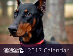 2017 GDR Calendar Small Cover