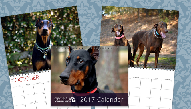 2017 GDR calendars are here!