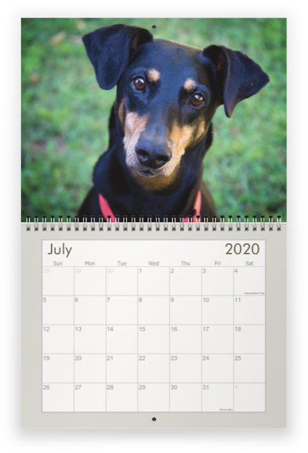 2020 Calendar - July